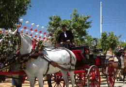Visitar la Feria de Sevilla